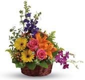 Cheers to You in nambour, sunshine coast , nambour all seasons florist