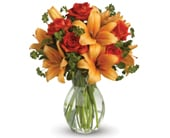 Fiery Beauty in manly vale , warringah florist