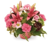 Perfect Posy for flower delivery Australia wide