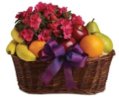 Fruit & Blooms in orange , pick me flowers and gifts