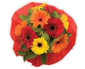 Bright Delight in orange , jenisa florist & gifts