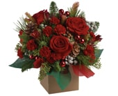 Christmas Mystic in lenah valley , valley floral boutique
