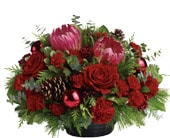 Christmas Grandeur for flower delivery New Zealand wide