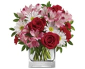 Undying Love in edmonton, cairns , edmonton flowers and gifts