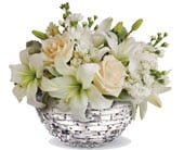 Snow Sparkle in sunshine coast , sunshine coast florist