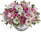 Spring Sparkle in werrington county , bubbles florist