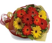 Gerbera Brights in orange , jenisa florist & gifts