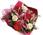 Stolen Kisses in bardon , petals florist network