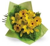 Sunny Spot in orange , pick me flowers and gifts