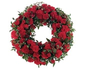 Red Regards in springwood, blue mountains , springwood florist