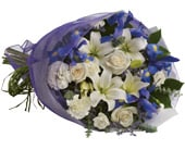Twilight in brisbane , brisbane online florist