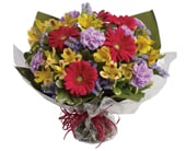 Sweet Surprise in springwood, blue mountains , springwood florist