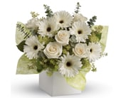 Timeless Treasure for flower delivery New Zealand wide
