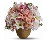 Garden of Memories in nowra , hyams nowra florist
