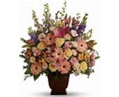 Loving Grace in brisbane , brisbane online florist