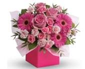 Think Pink in orange , jenisa florist & gifts