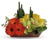 Zen Dreams in midland , abunch flowers midland florist