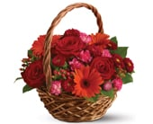 Warm Wishes for flower delivery Australia wide