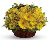 Basket of Sunshine in orange , pick me flowers and gifts