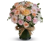 Isn't She Lovely in orange , classic country rose