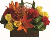 Getaway in harristown , harristown florist