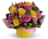 Rosy Sunshine in adelaide cbd , florists flower shop adelaide
