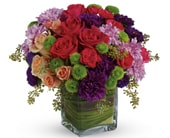 One Fine Day in Morwell , Mid Valley Florist