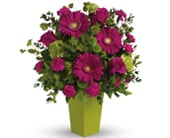 Ravishing Pink in orange , pick me flowers and gifts