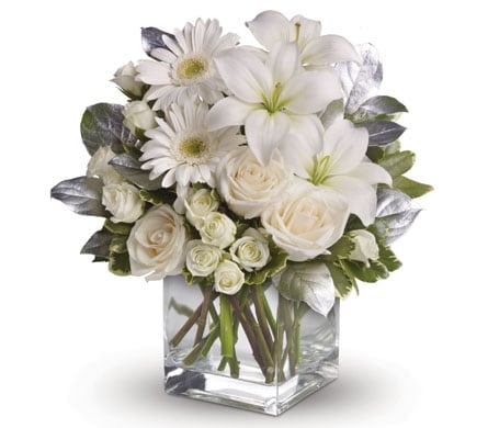 Shining Star in annandale, townsville wedding flowers