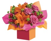Make a Wish in orange , jenisa florist & gifts