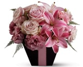 First Blush in corrimal , pink domino florist