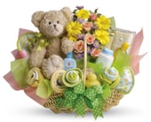 New Baby in edmonton, cairns , edmonton flowers and gifts