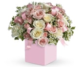 Celebrating Baby Girl in wetherill park, sydney , angel's garden florist