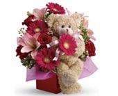 Stylish Celebration in edmonton, cairns , edmonton flowers and gifts