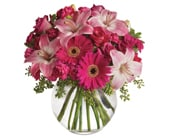 Pink Me Up in blaxland east , red lily floral design