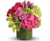Floral Fantasy in bright , bright florist