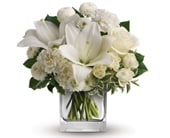 Starlit Kisses in brisbane cbd , florists flower shop brisbane
