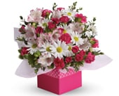 Polka Dot for flower delivery united kingdom wide