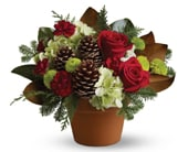 Country Christmas in orange , pick me flowers and gifts