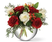 Celebrate Christmas in preston , preston florist