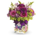 Enchanted Wishes in brisbane , brisbane online florist
