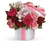 Hats Off to Passion in chadstone , chadstone florist