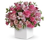 Doting Mum in lakes entrance , lakes entrance florist