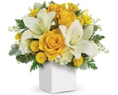 Golden Laughter in cannonvale , karen hill floral design