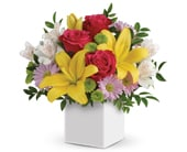 Perfect Delight in brisbane cbd , florists flower shop brisbane