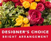 Designer�s Choice Bright Arrangement in orange , jenisa florist & gifts