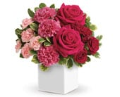 Melt Mum's Heart in springwood, blue mountains , springwood florist