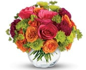 Smile Bright in orange , pick me flowers and gifts