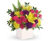 Vivid Delights in north sydney , florist north sydney