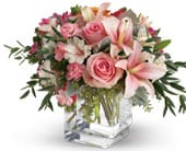 Pink Flora in blackburn , petals florist network